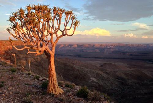 namibie rondreis fish river canyon Atuu travel kloof visrivier