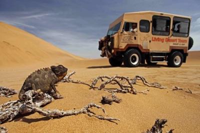 namibie rondreis swakopmund walvis bay woestijn living desert tour atuu travel afrika reizen specialist