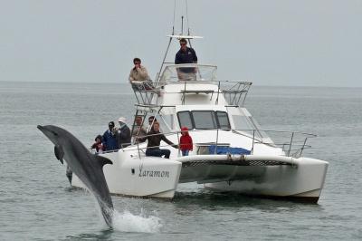 namibie rondreis swakopmund walvis bay walvisbaai boottocht dolfijnen atuu travel individuele afrika reizen