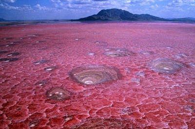 Tanzania reizen op maat natronmeer lake natron individuele rondreis atuu travel