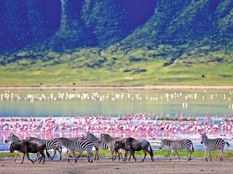 atuu travel Kenia kenya Maasai Masai Mara safari reizen natuurreservaat