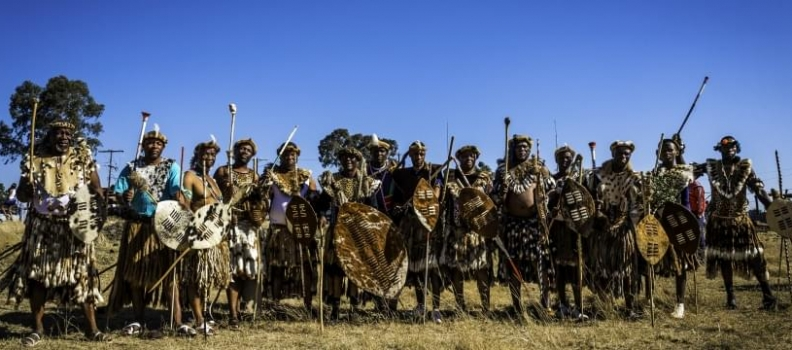 A Fool's Paradise: roadmovie over Zuid-Afrika
